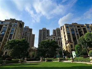 公园一号各楼层毛坯三房走一手程序优惠价格只要4千来一平