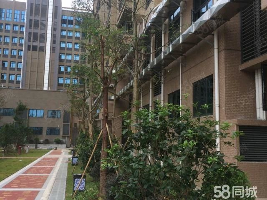 阳东金桂花园超笋两方一厅适合创业年轻人过渡住房