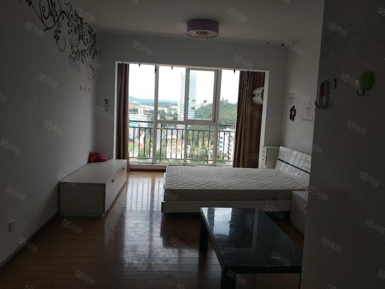 师院附近盛世庭院一室一厅单身公寓精装修