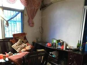 东山板块刚需改善性住房