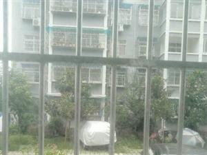 兴汉新区石马东路北城新苑一楼101平米简装售价32万