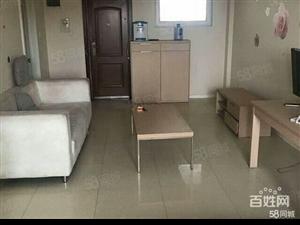 首创象墅公寓60平一室一厅一厨一卫精装修
