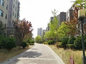 居家花园小区,华安锦绣樱园110万3室2厅1卫精装修