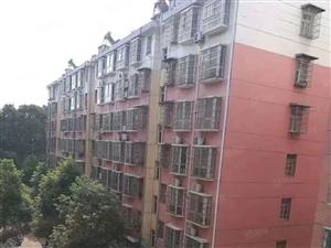 新区小区房4楼有小区3室2厅有阳台