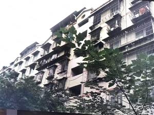 卖血价龙马潭精装修大两房可改三房06年框架结构102