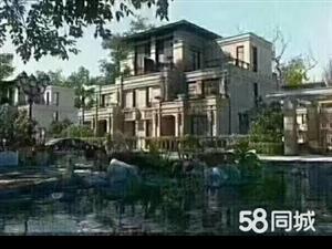 房博士60万住别墅洞庭湿地旁《合众领岛》豪华园林湖景别墅