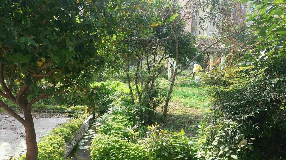 独栋别墅带一亩七分地院子精装修手续齐全可以过户看房方便