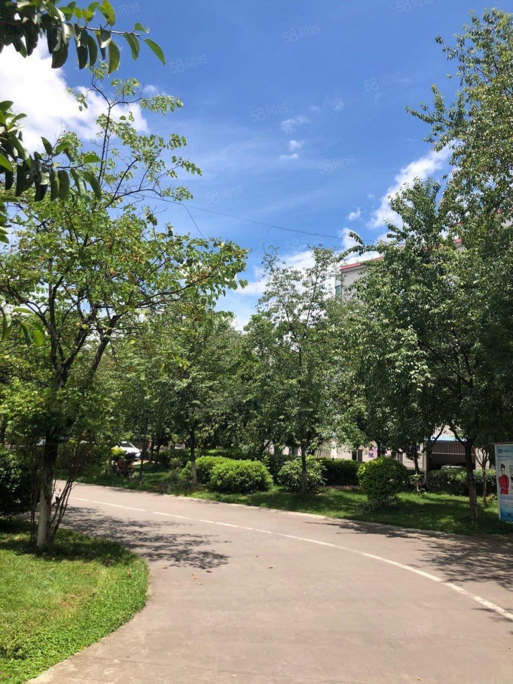 ,红塔公园旁广电局生活区59万4室精装修