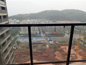 金都汇景观房17楼马上可以装修住市中心位置公园学区房