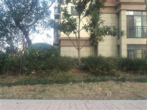 祥源,御景湾,123.7平方左右,3居室,11楼