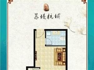 苏园现房3个可证装修入住经典一室可以改两室首付百分之30