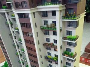 鑫源一品单价3800平米数可选楼层可选