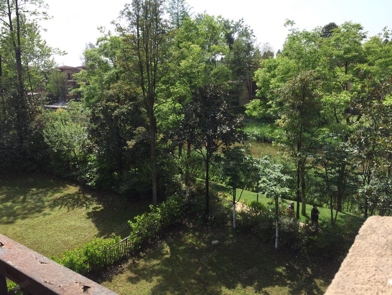 左邻右舍云溪谷临河独栋端头带花园大300平有钥匙稀有房源