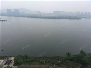 南岸中高层一线看湖无敌景观视野,唐程御品希缺户型!