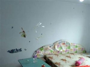 重庆路小学1室1厅1卫