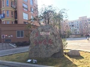 泰顺县新城茶文化城3室2厅2卫