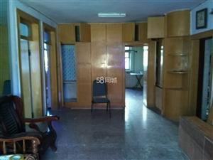 新区1号小区2室1厅1卫