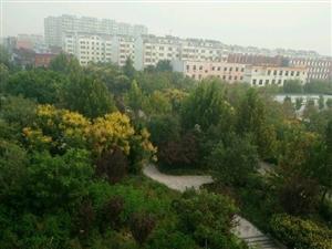 东营西城锦霞北区2室1卫1厅