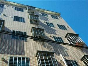 众成中学附近共5层楼整栋出售