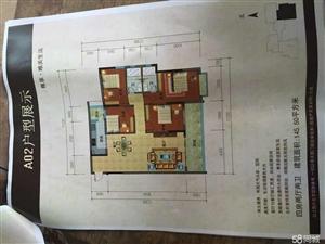 化州河西北岸有新楼出售4室2厅2卫