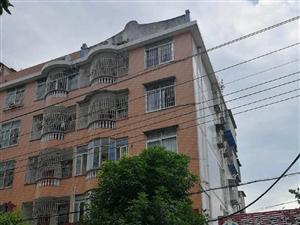 紫荆新村自建房3室2厅2卫