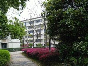 永利娱乐场海晨国际后面3室2厅2卫141㎡4楼
