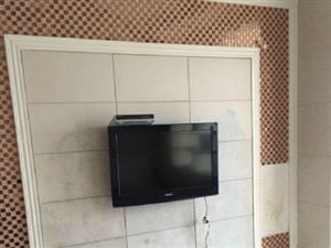 永城大广场小区房1室1厅50平米精装修年付