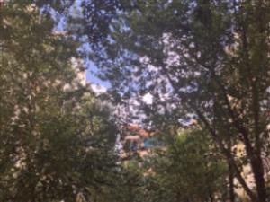 澳门网上投注官网澳门网上投注官网县交通小区4室2厅2卫139.22平米欢迎随时看房
