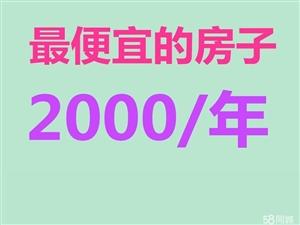 后五里;面粉厂综合楼;年租2000,贵州街,煤气市场