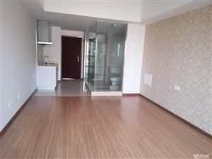 万达公寓二期,精装,价格实惠,钥匙在手随时看房