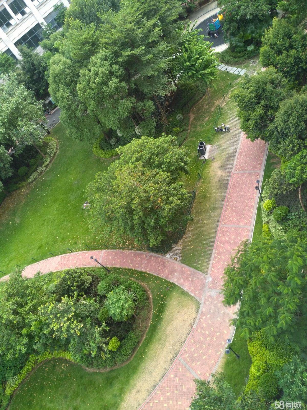 自带63亩公园,中庚城大宅,中心位置,一户一梯,安静