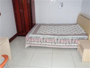 万达广场东沿河公园南段1室1卫空调暖气宽带家具