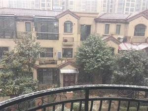 碧桂园一期别墅超性价比四房+45方花园