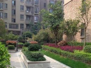 佳源城市花园清水毛坯现房买到即可装修
