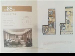 永嘉世贸公寓买63平得126平带阳台南北通后一栋出售
