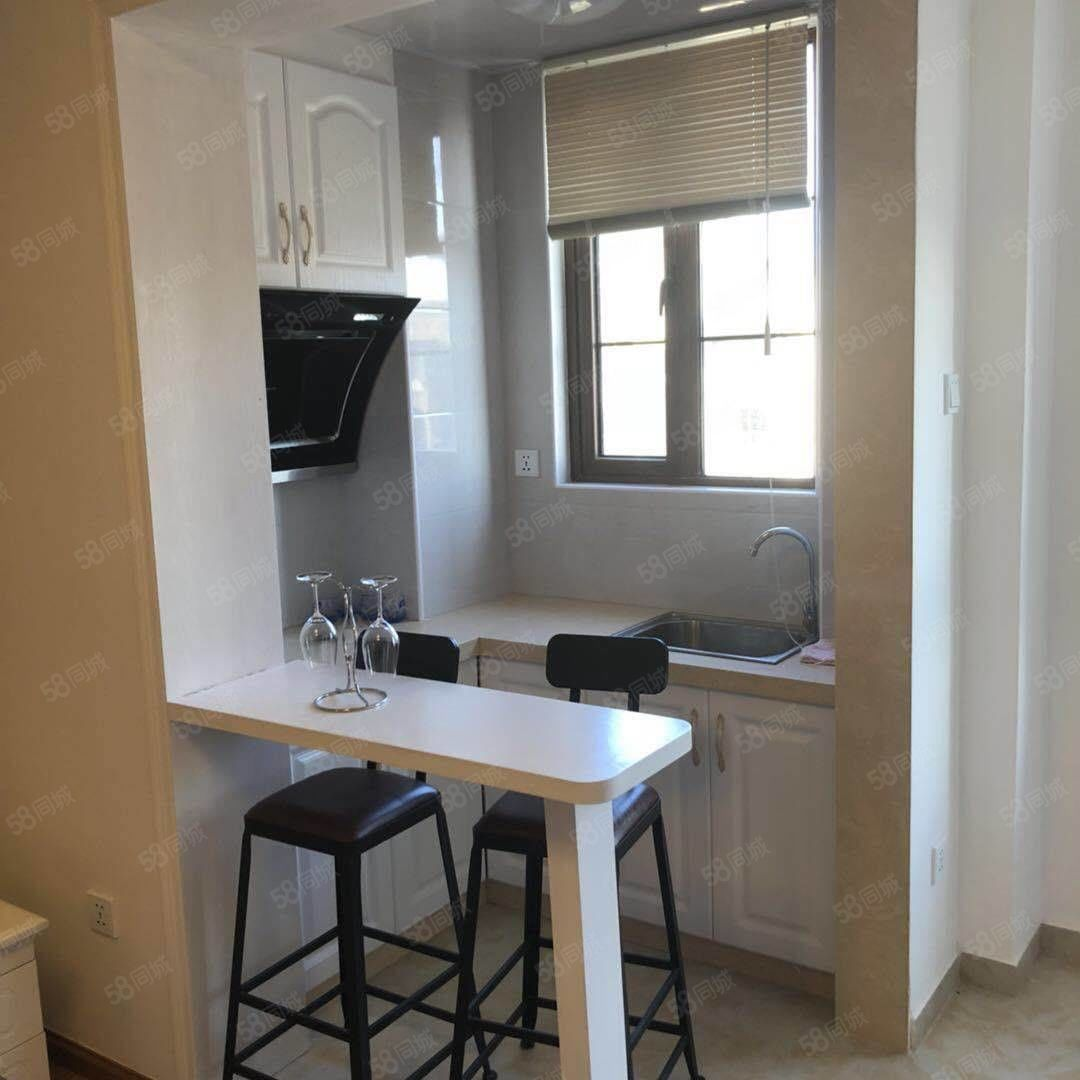 美林新镜39平单身公寓1100精装修家电齐全