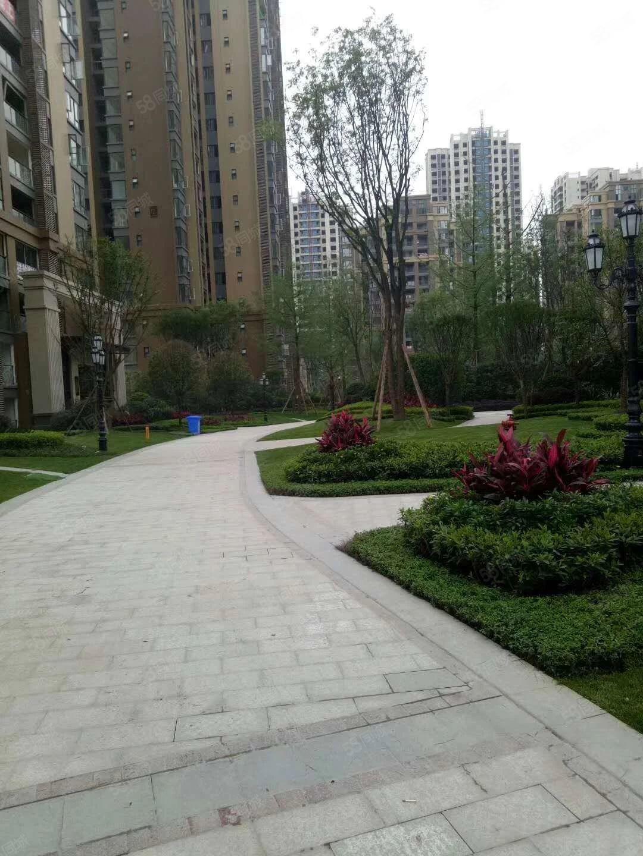 下江北邦泰国际唯一一楼三连跃实享230平商住两用仅售83万