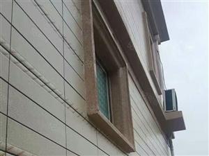 双拼别墅欧式外墙精装房有天有地改善房