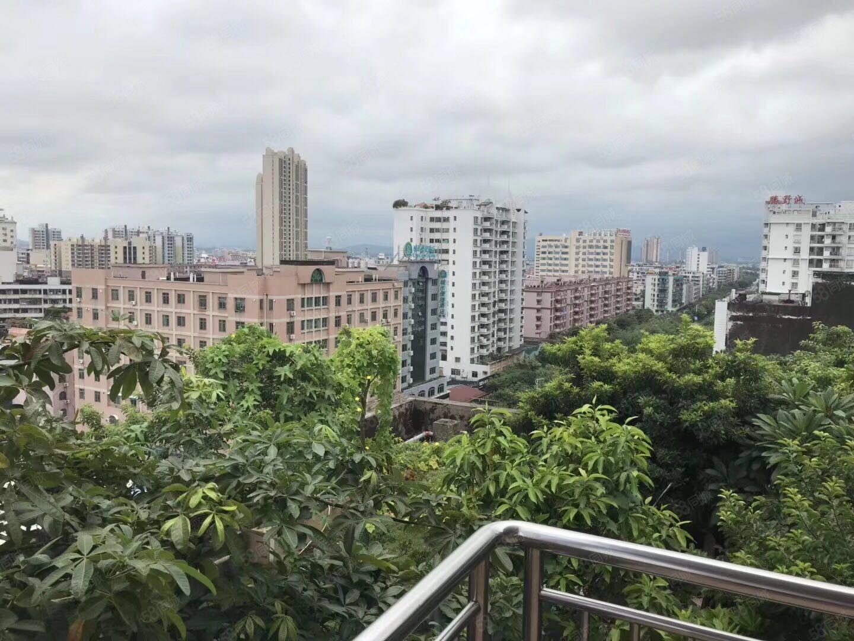 碧桂圆别墅,靓装修,仅租4600适合居住或办公