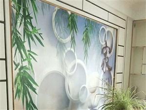 南山花园55平米一室一厅