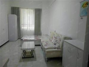 正弘数码港公寓,38平米,每月1200元,急租,一室,精装修