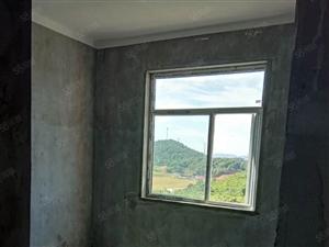 光谷旁卢家湾小区MAI一层送一层一套房子可以住两家人