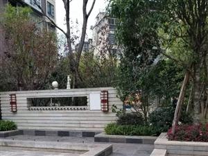 古蔺天立一品上城彩叠园6跃7带超大平台花园