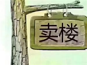 山语城二期毛坯电梯六楼南北通透可按揭