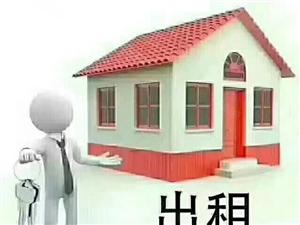 南川福台安置点独家院出租,停车方便,价格面议
