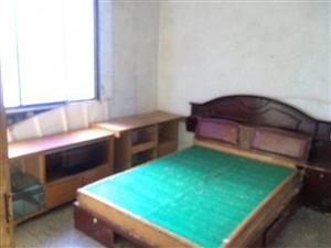 大观楼南街标准两室一厅月租800元