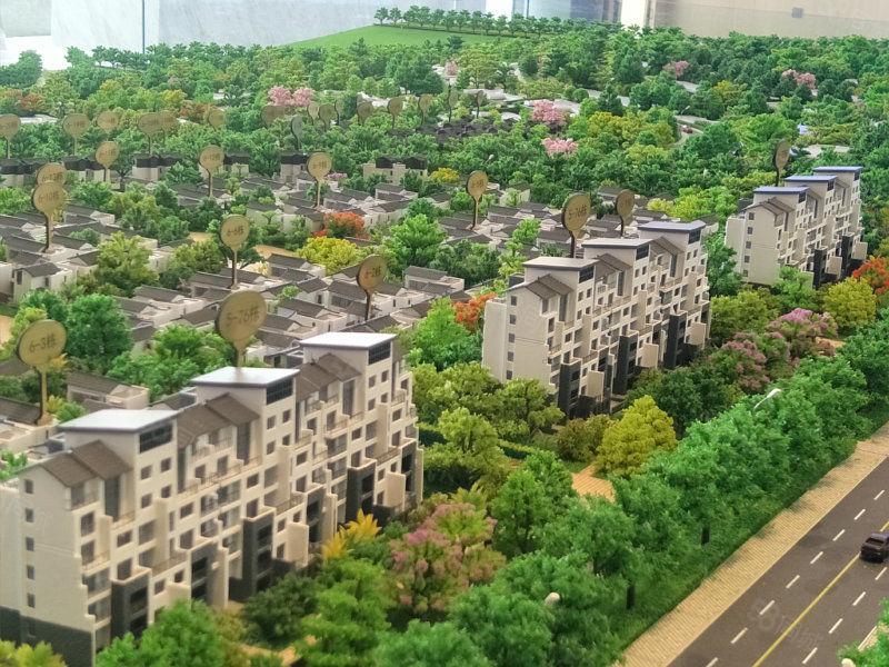 急售19万新城区一梯两户花洋房南北向学位房