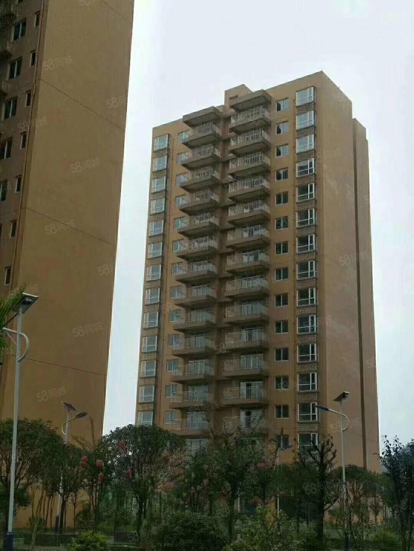 滨江时代电梯房小洋房首付12左右现房一手房