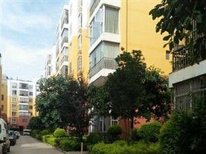 望龙苑紧凑小三房送装修+市一中名校驻守景观好房+性价比高