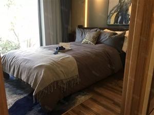 云悦公馆精装loft买一套得两套双入户租金大于收益